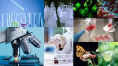 Introductory Biology: Complete course of Biology